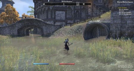 eso how to get to wayrest