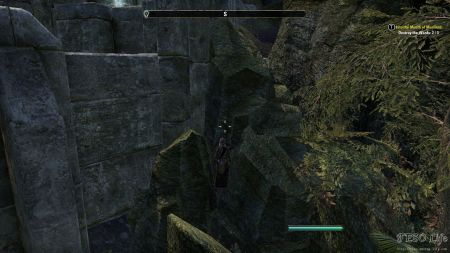 eso how to get to shrouded pass wayshrine