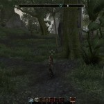 ESO Grahtwood Treasure Map IV digging spot