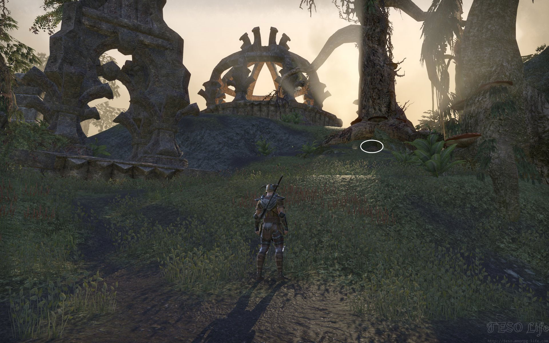 Shadowfen CE Treasure Map hidden location