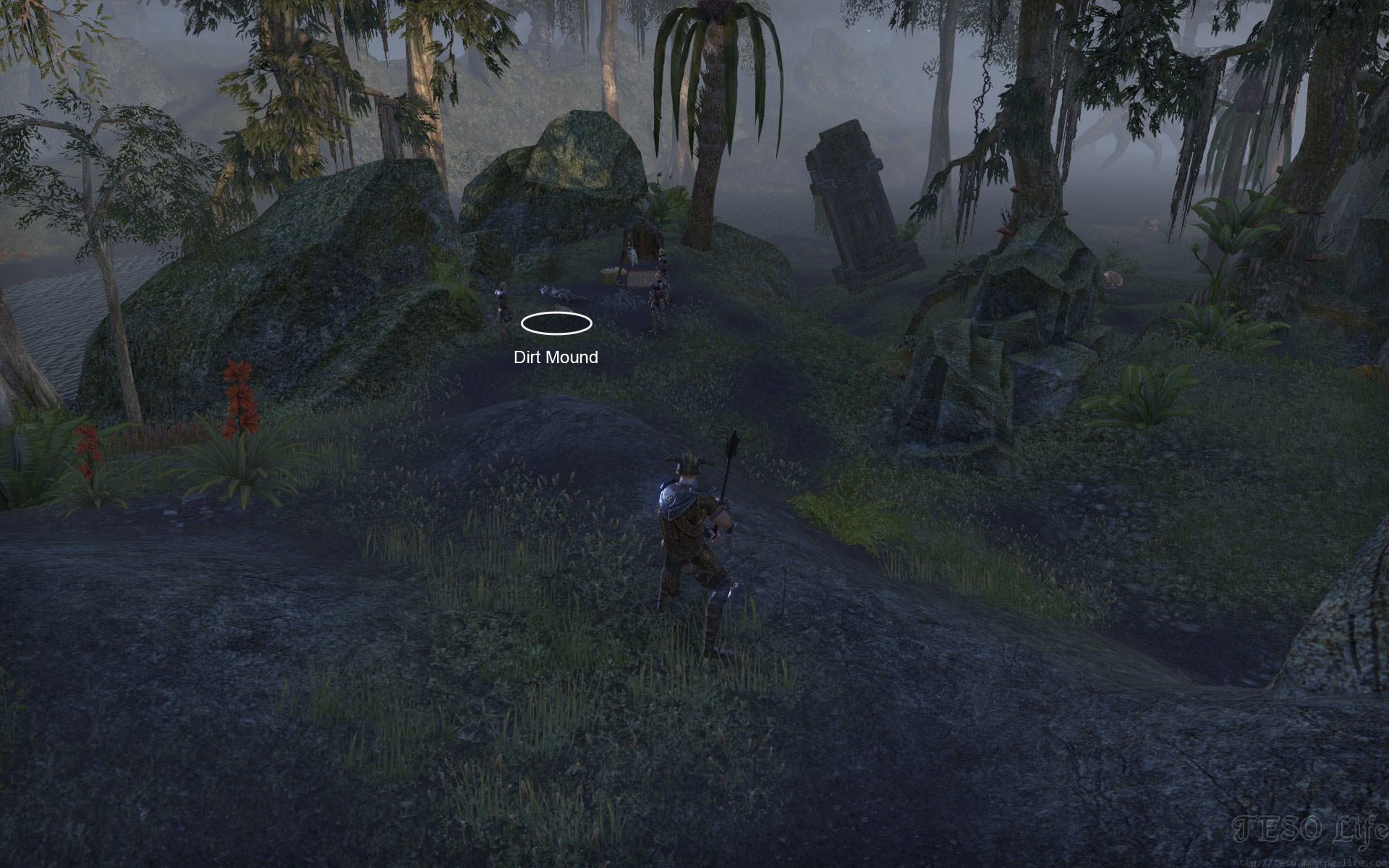 Shadowfen Treasure Map II dig location