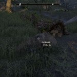 eso Greenshade Treasure Map III chest