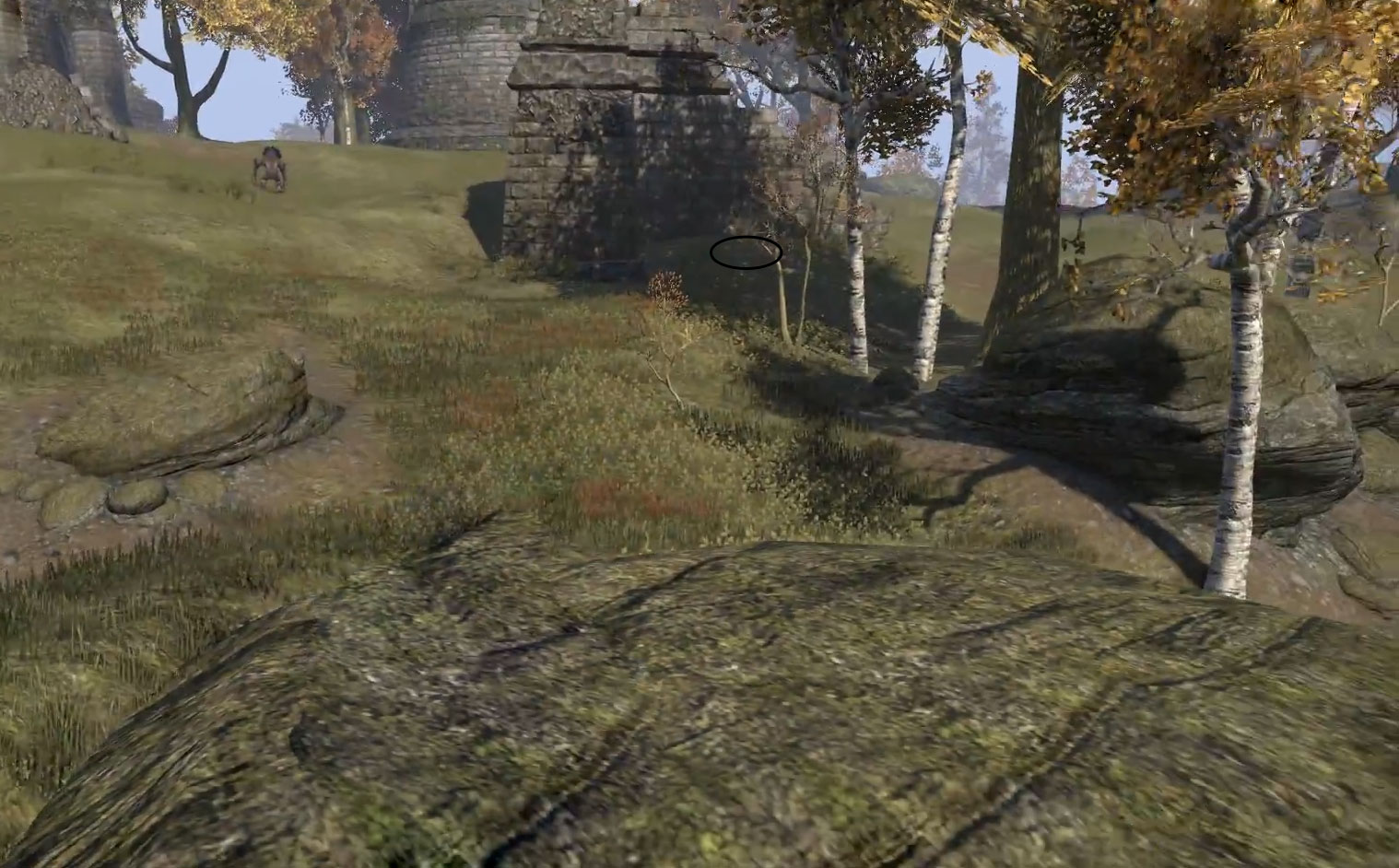 Cyrodiil Treasure Map IX in game