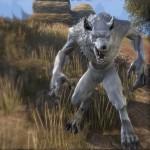 eso white werewolf
