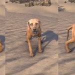 Alikr Dune Hound Eso Crown Store