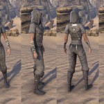 Crafty Lerisas Thief Outfit ESO Crown Store