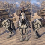 Piebald Destrier ESO Crown Store