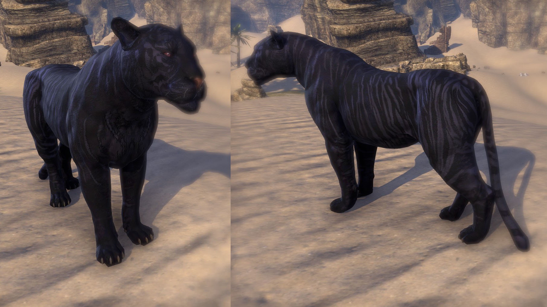 Striped Senche Panther ESO Crown Store