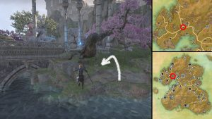 ESO Never Ending Scroll Relic Location Summerset