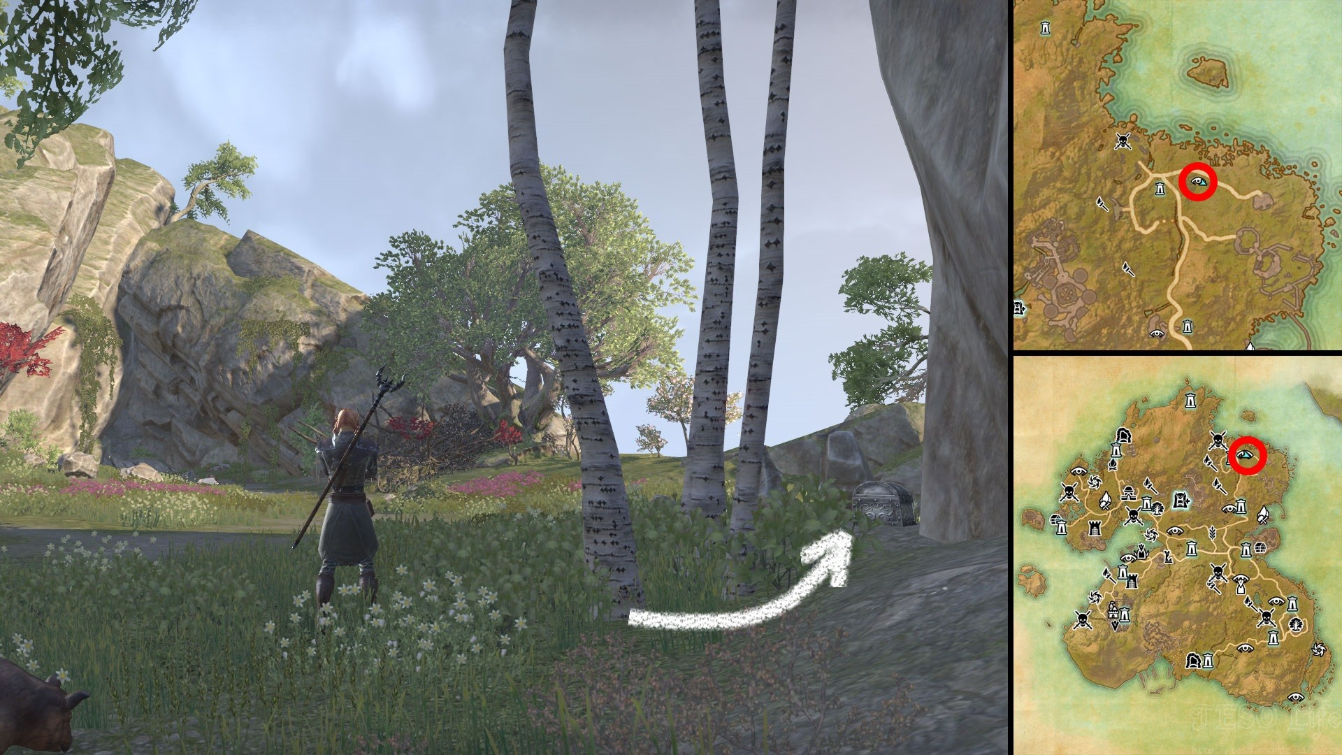 ESO Pillow of Sweet Dreams Relic Location Summerset