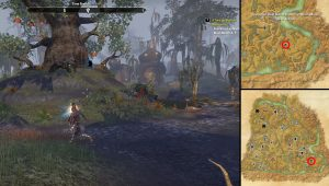 ESO Psijic Map of Black Marsh Shadowfen Time for Mushrooms Locations