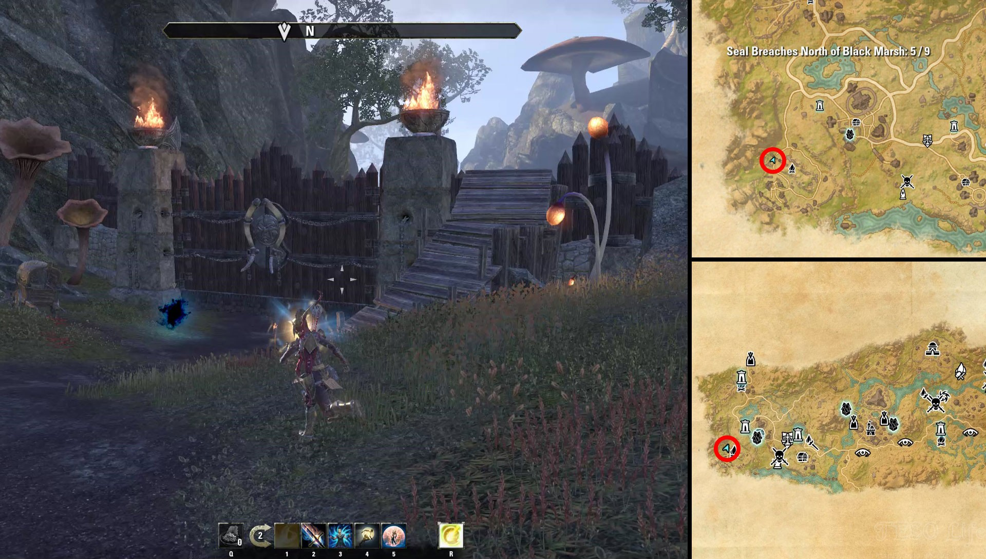 ESO Psijic Map of Black Marsh Time Breach Locations
