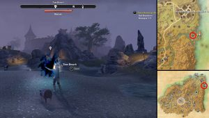 ESO Rivenspire Psijic Map Seal Breach Location